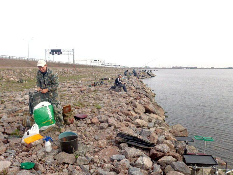 ловля рыбы на платине видео