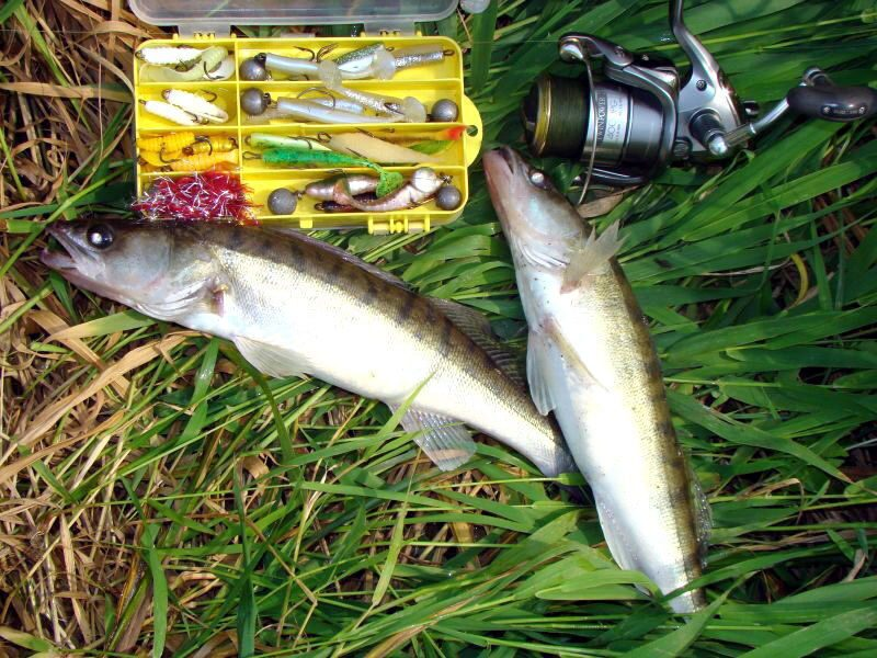 способы рыбалки в ветреную погоду
