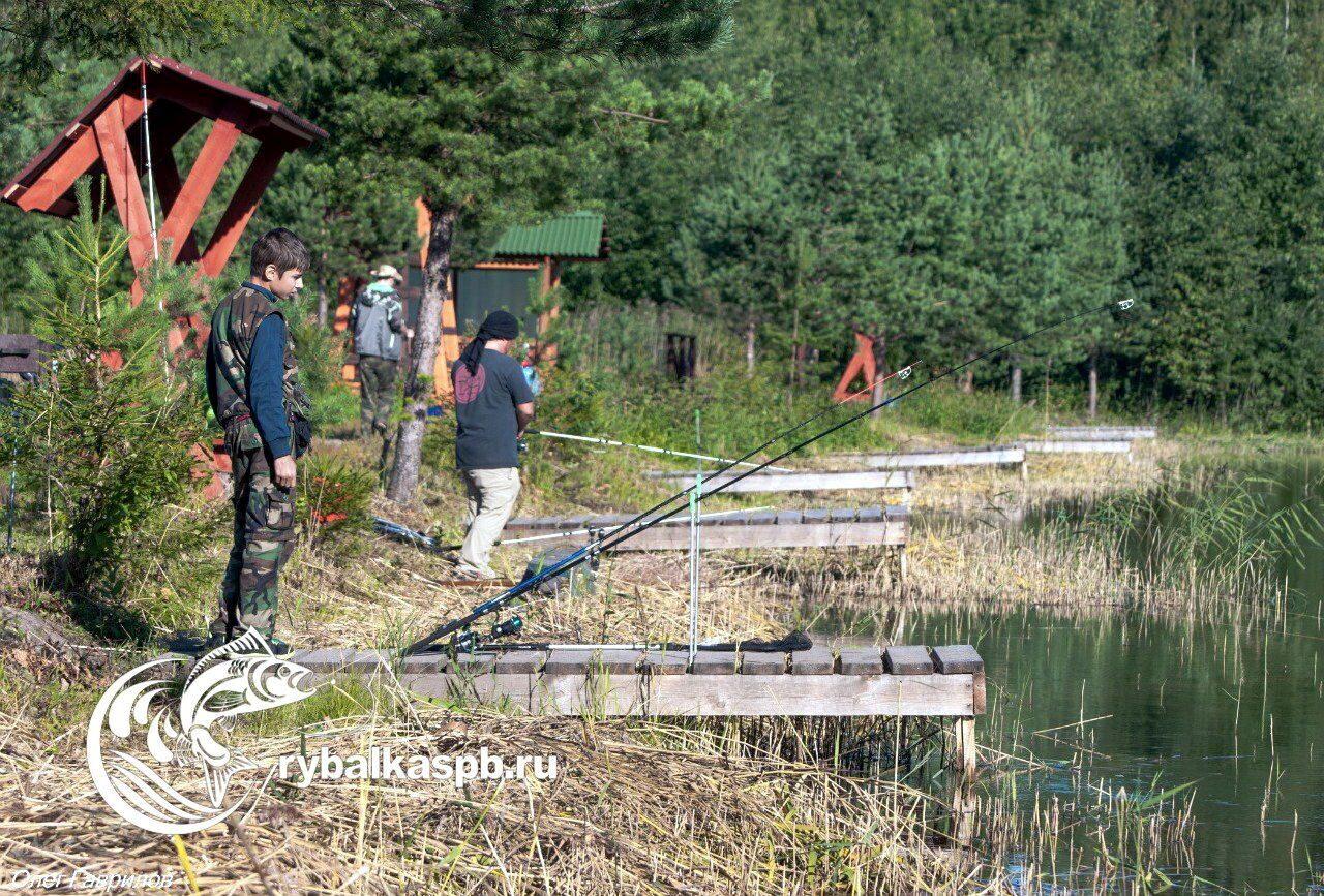 лучшие рыболовные места в ленинградской области
