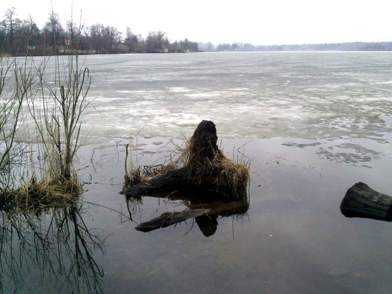 рыбалка плещеево озеро форум