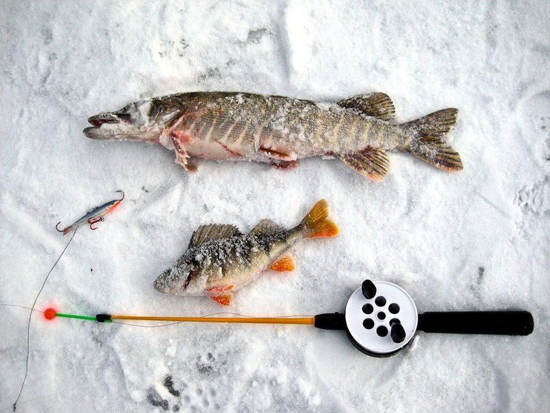 куда съездить на рыбалку в марте