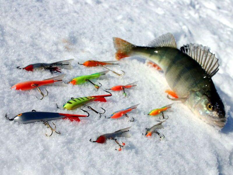 на что ловить судака в марте