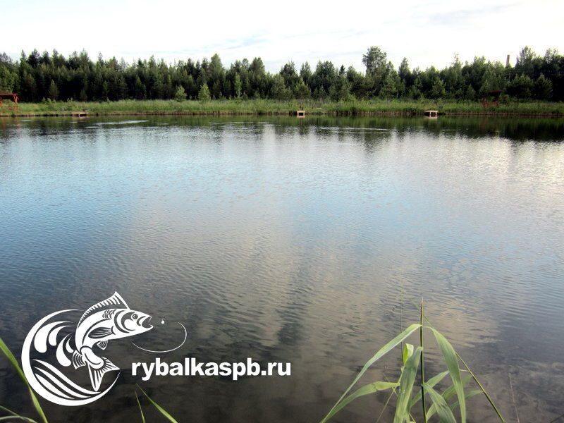 Рыбалка в Лепсари: Охотничье-рыболовные базы и