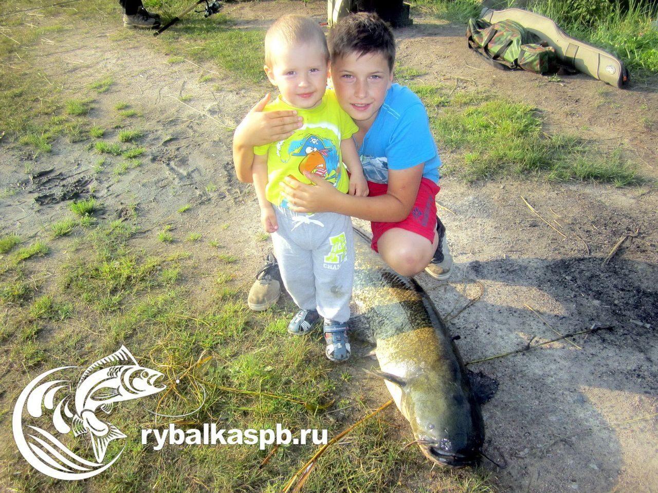 Рыбалка в Лепсари - Платная рыбалка в Ленинградской