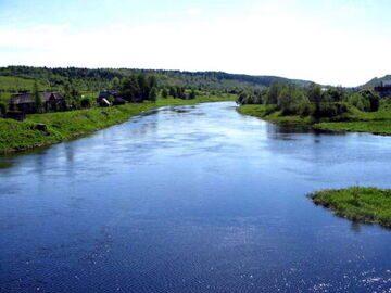 Река Оять виды рыбы в реке