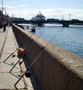 Какую рыбу можно поймать в Неве