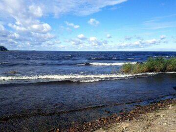 Ладожское озеро рыбалка и виды рыбы